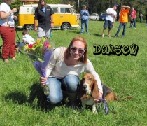 2013-doggy-best-in-show